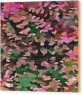 Foliage Abstract In Pink, Peach And Green Wood Print