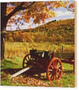 Foliage And Old Wagon Wood Print