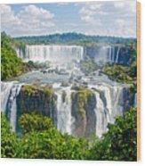 Foliage In And Around Waterfalls In Iguazu Falls National Park-brazil  Wood Print