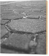 Follow The Brick Road Wood Print