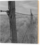 Follow The Wire Wood Print