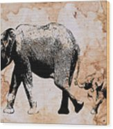 Following Mum - Mother And Baby Elephant Animal Decorative Poster  4 - By Diana Van Wood Print