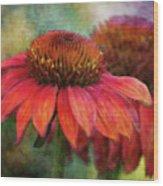 Fondness 2751 Idp_2 Wood Print