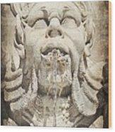 Fontana Del Pantheon 2 Wood Print