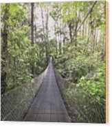 Foot Bridge In Costa Rica Wood Print