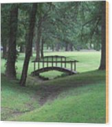 Foot Bridge In The Park Wood Print