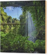 Footbridge And Crystal Falls  In The Rainforest Of Dorrigo In Australia Wood Print