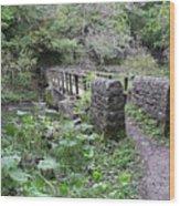 Footbridge At Millers Dale Wood Print