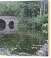 Footbridge Buckeye Falls Wood Print