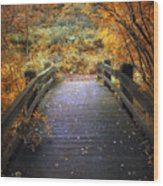 Footbridge Canopy Wood Print