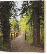 Footbridge In Aspen Colorado Wood Print