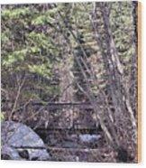 Footbridge In The Spring Wood Print