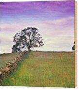 Foothill Sunrise Wood Print