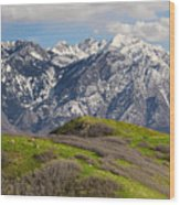Foothills Above Salt Lake City Wood Print