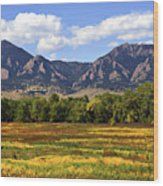Foothills Of Colorado Wood Print