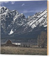 Foothills Of The Tetons Wood Print