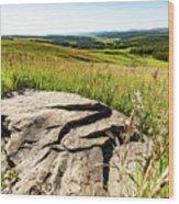 Foothills View Wood Print