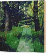 Footpath Wood Print