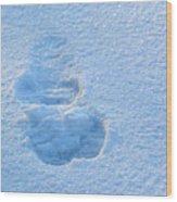 Footprint In The Snow Wood Print