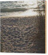 Footprints In The Dunes Wood Print