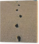 Footprints In The Sand ... Wood Print