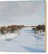 Footprints In The Snow Iv Wood Print