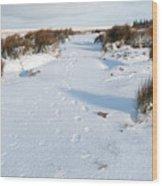 Footprints In The Snow V Wood Print