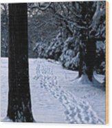 Footprints In The Snow Wood Print