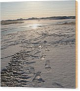 Footsteps In Frozen Landscape Wood Print
