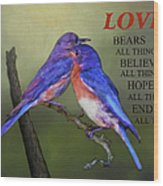 For Love Of Bluebirds And Scripture Wood Print