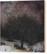for Sledding and Starlings Wood Print