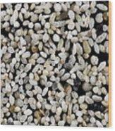 Foraminiferan Tests Wood Print
