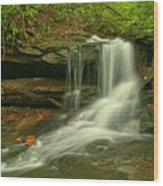 Forbes State Forest Cole Run Cave Falls Wood Print