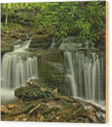 Forbes State Forest Twin Falls Wood Print