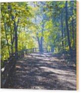 Forbidden Drive - Philadelphia Wood Print