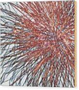 Force Field Variation 2 Wood Print