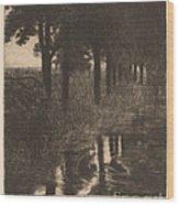 Forellenweiher (trout Pond) Wood Print