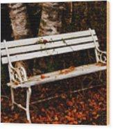 Foresaken Seat Wood Print