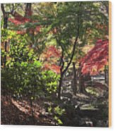 Forest #7 4k Wood Print