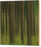 Forest Abstract01 Wood Print