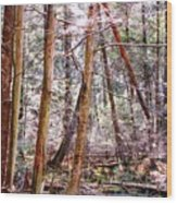 Forest Bling Wood Print