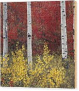 Forest Color Wood Print
