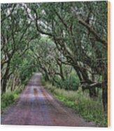 Forest Corridor Wood Print