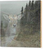 Forest Dweller Wood Print