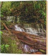 Forest Falls Wood Print