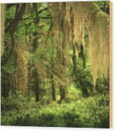 Forest Fantasy - Quinault - Gateway To Paradise On The Olympic Peninsula Wa Wood Print