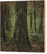 Forest Fantasy Wood Print