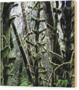 Forest Finery Wood Print