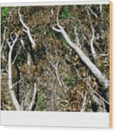 Forest Fire B Wood Print