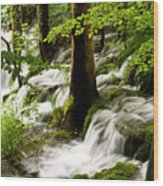 Forest Flows Wood Print